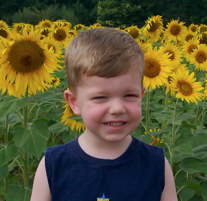 jojo-and-sunflowers-cropped